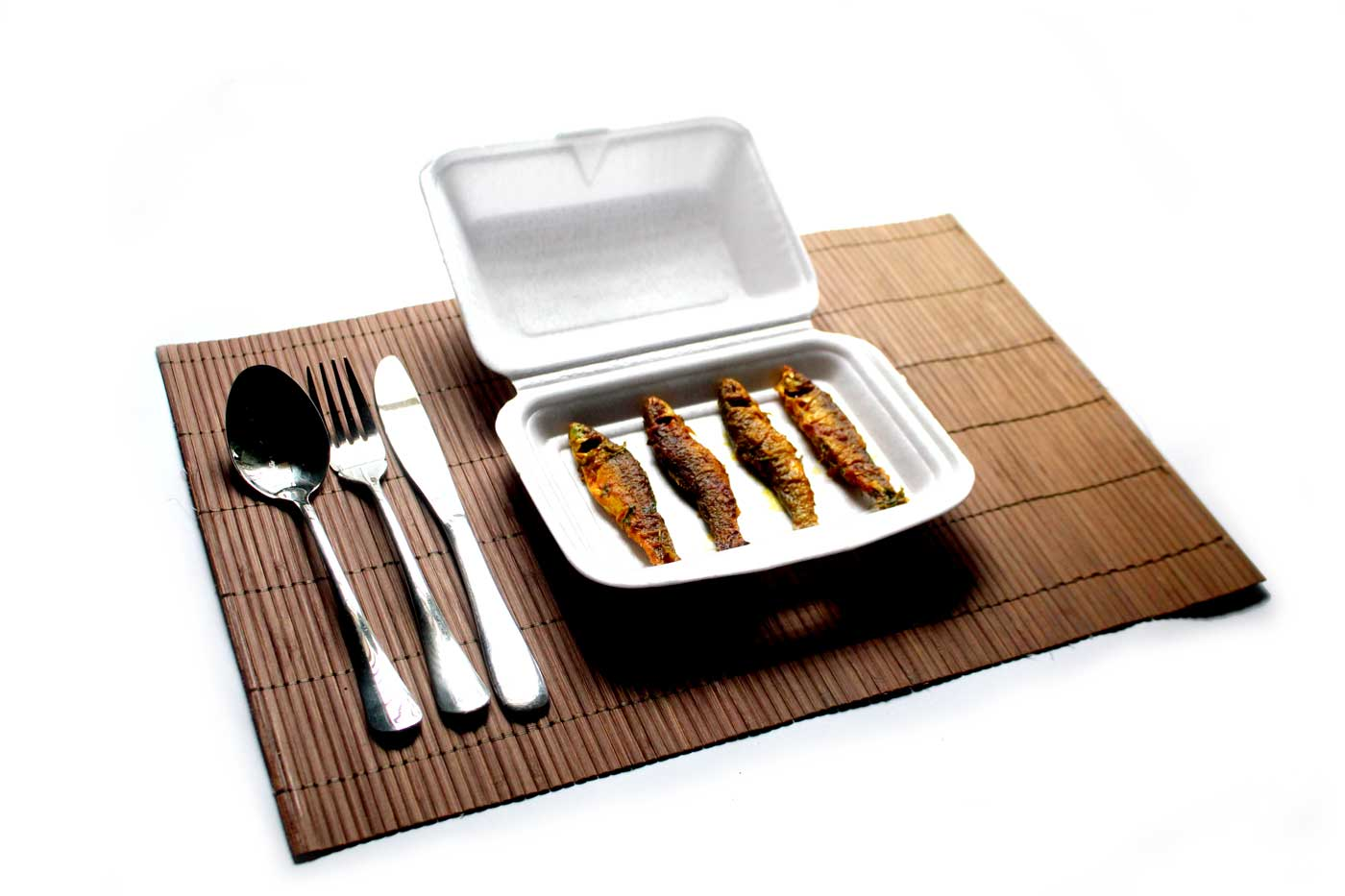 fish fry and spoon, food package